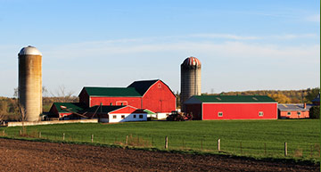 Minnesota Dairy Farm | Agriculture & Crop Hail Insurance